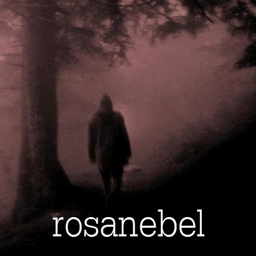https://soundcloud.com/rosanebel