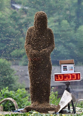 Bee-Bearding Contest in China