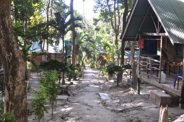 Free Range Slomans Tonsai Beach