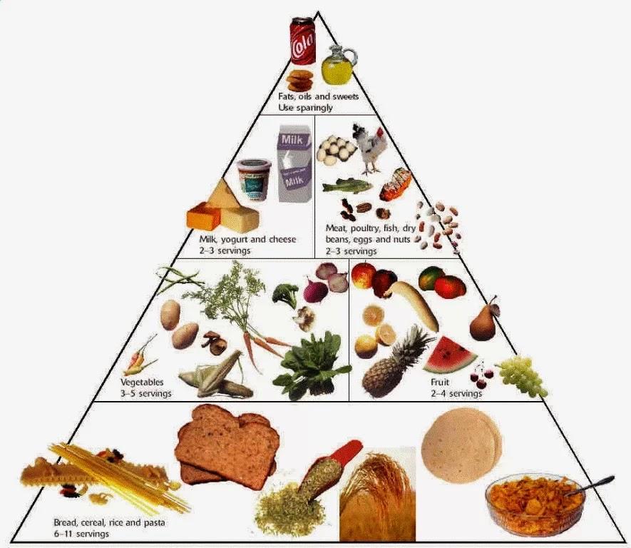 Makanan Sehat untuk Meningkatkan Daya Tahan Tubuh