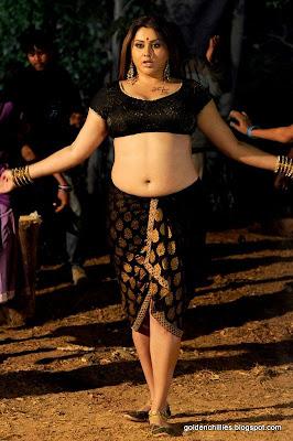 south indian actress namitha hot photos