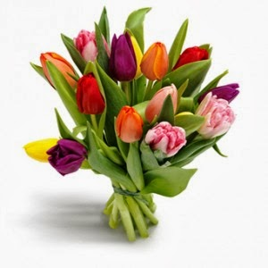 http://www.floristvancouver.com/shop/tulips-etc/