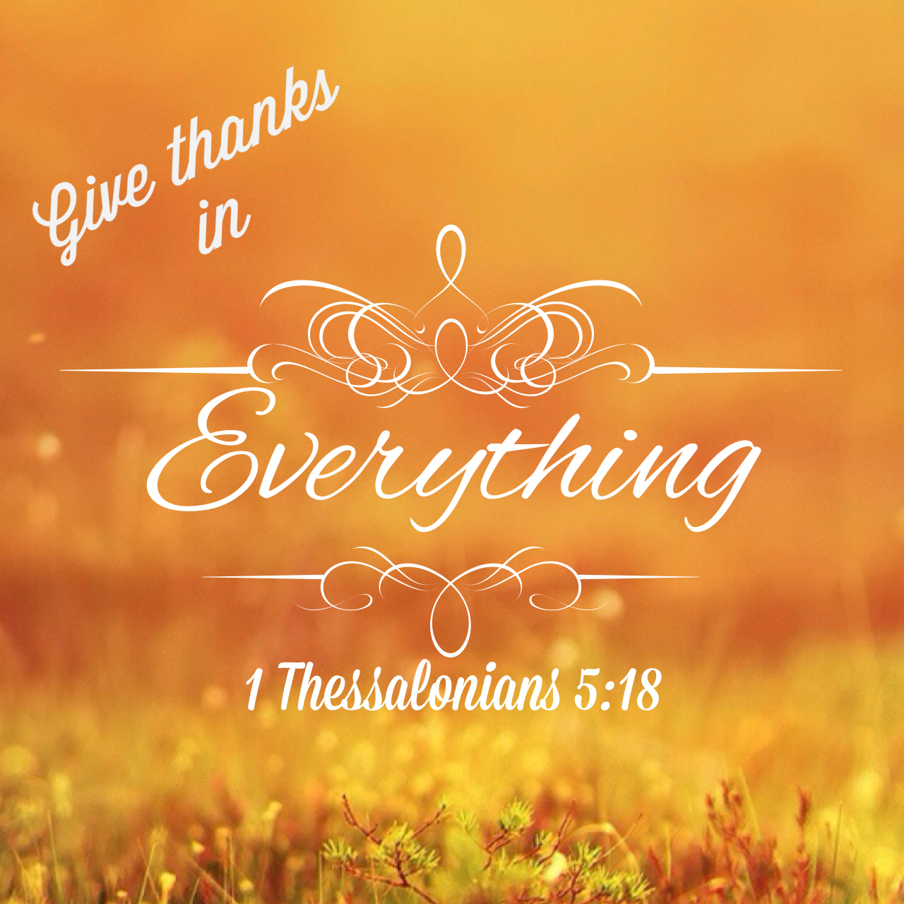 Having a thankful heart will change your life!