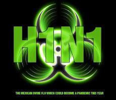 UNE  JORNADA DE VACUNACIÓN contra la gripe A H1N1