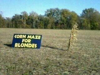 http://1.bp.blogspot.com/-z4C01-XdOng/ToEJ87m-UrI/AAAAAAAAK20/8d-eYTQCtoE/s400/Corn%2BMaze%2Bfor%2BBlondes.jpg