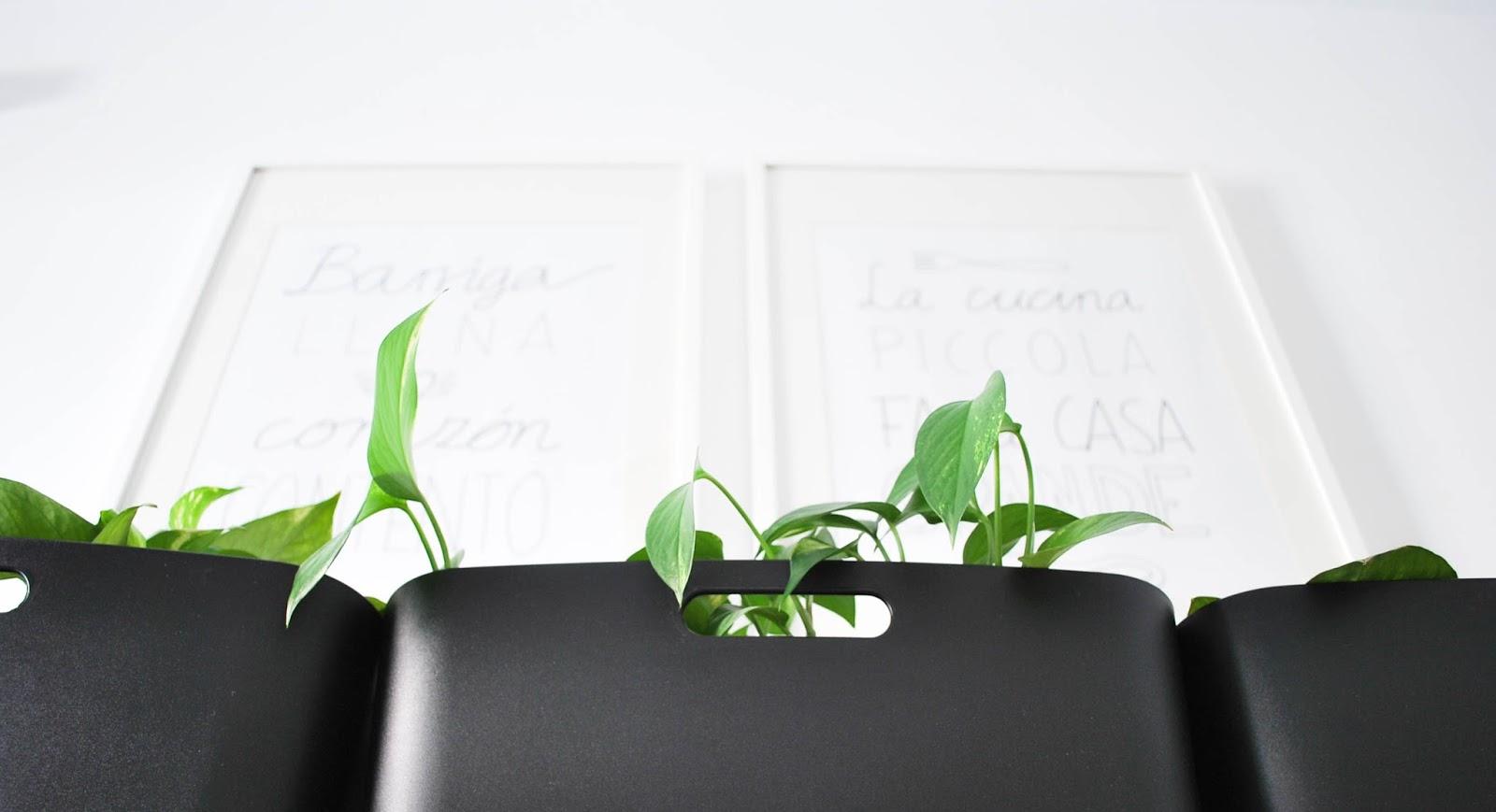 decoración cocina plantas http://www.hommum.com/2014/05/my-home-un-rincon-verde-en-mi-cocina.html