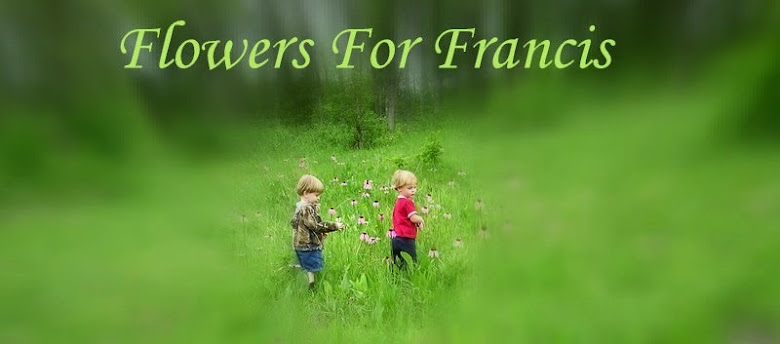 Flowers For Francis
