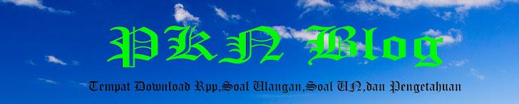 Blog PKN