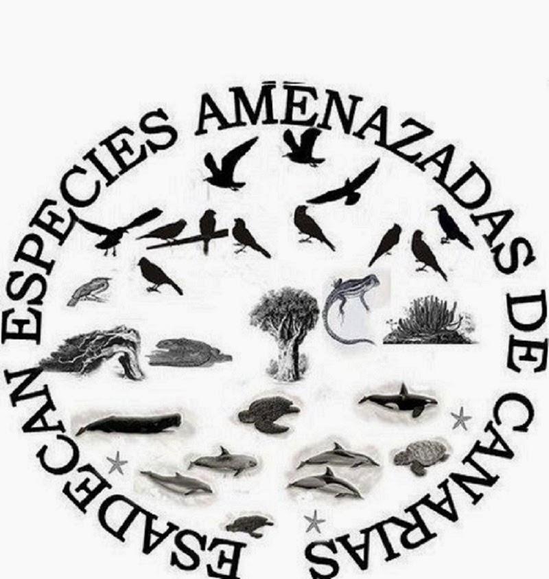 Especies Amenazadas de Canarias