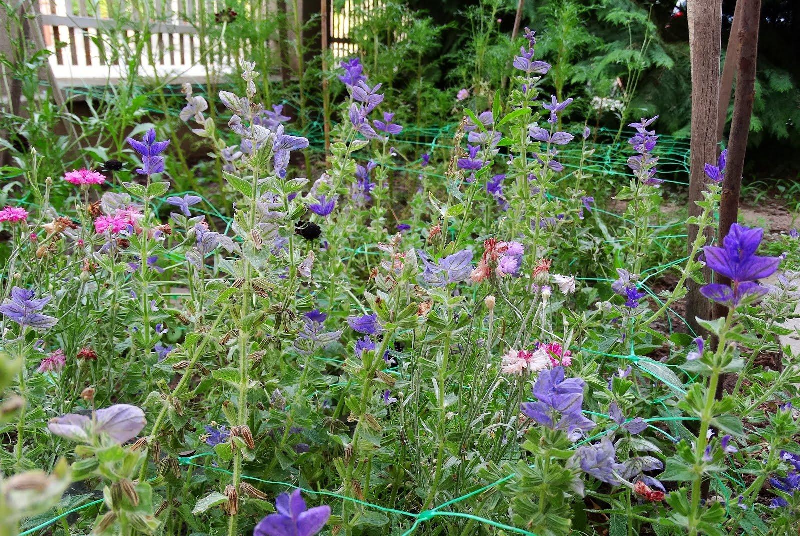 A szép és ízletes kertért