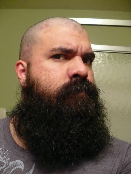 lumbersexual beard