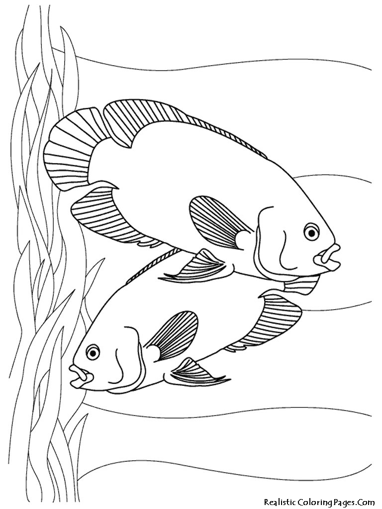 Aquarium Fish Printable Coloring