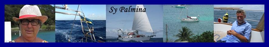 Sy Palmina