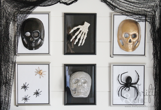 3D Halloween specimen gallery wall using dollar store frames and finds.