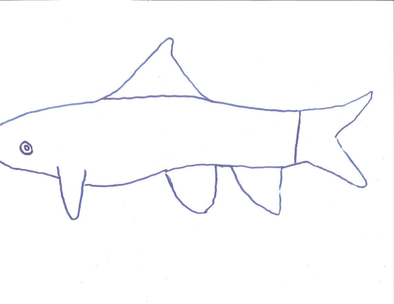 Line Art Of Fish : Fish line drawings th grade art