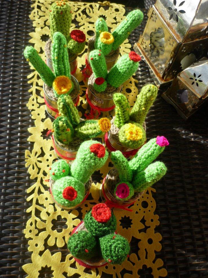 Cactus setas y otras plantas malarinto - Composiciones de cactus ...