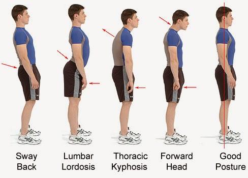 وضعية الجسم ، وضعيات الجسم ، حركة الجسم ، وقوف ، الوقوف ، كيفية الوقوف