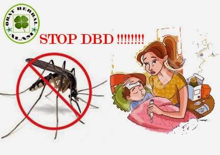gejala, obat, pertolongan pertama, alami, herbal, tanaman, nyamuk, aides