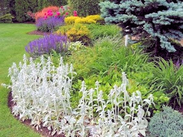 Perennial Gardens Landscape Design Html on perennial garden plans zone 7, cottage gardens landscape design, perennial shade garden design, perennial garden layout design, perennial bulb garden design, perennial flower garden design plans, perennial garden plans zone 5, perennial garden plants,