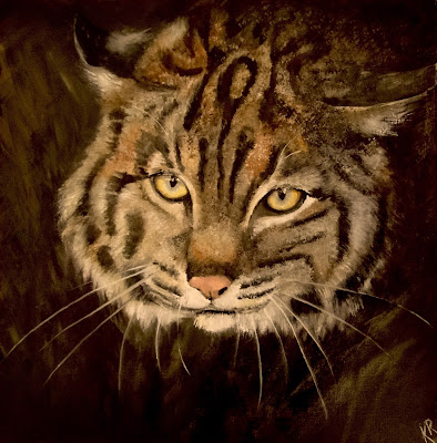 oil study of a bobcat