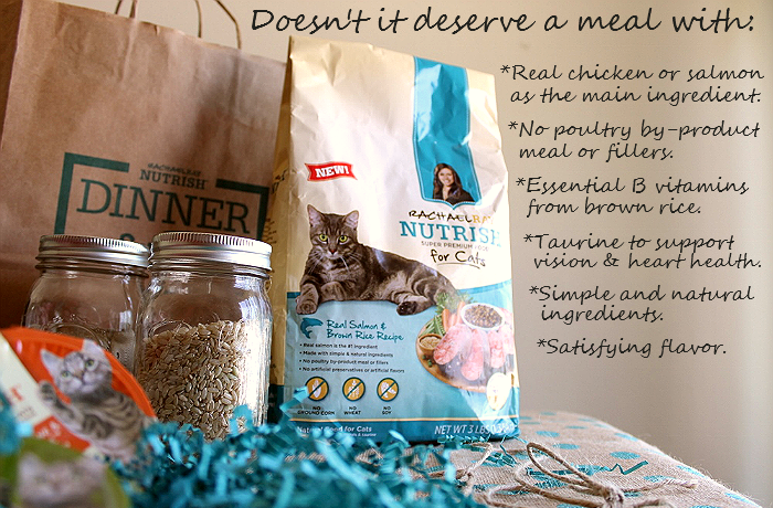 Make mealtime moments with Rachael Ray's #NutrishForCats range of simply inspired premium cat food. #MC #Sponsored