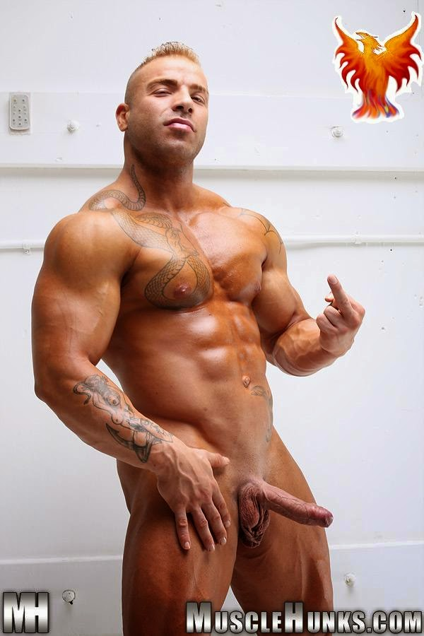 Strips Naked And Strokes His Big Hard Cock For Muscle Hunks Pic