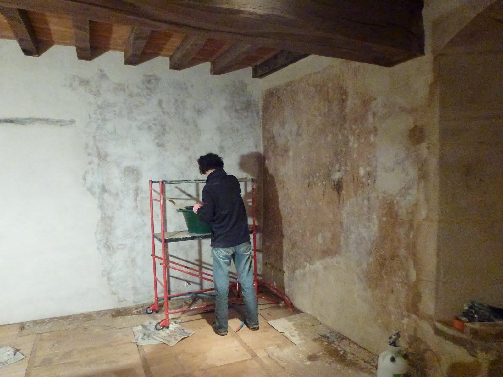 la basse passière.: etape 18 : badigeonner les murs.