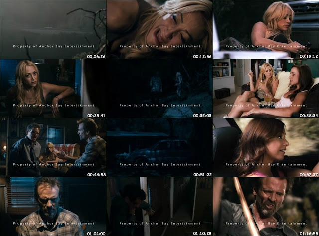 The Victim (2011) DVDScr 350MB