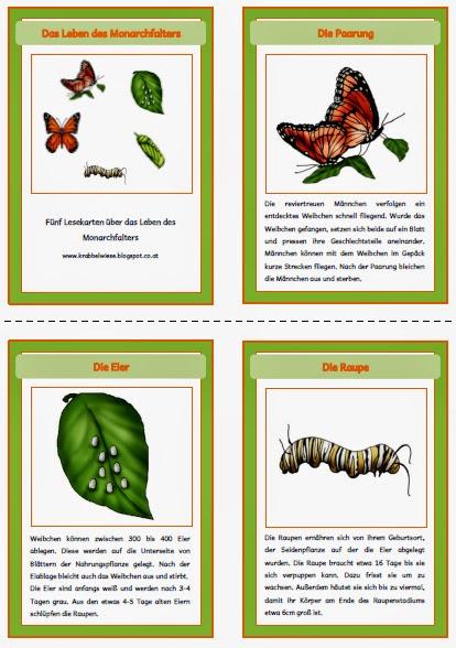 Atemberaubend Schmetterling Arbeitsblatt Zeitgenössisch ...