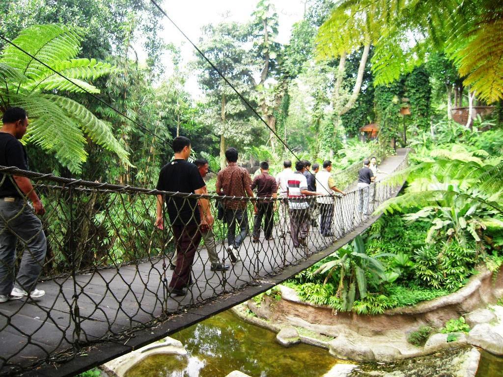 Nature In The World Taman Nasional Meru Betiri Jawa Timur
