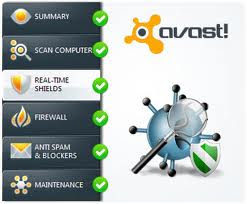 avast free edition
