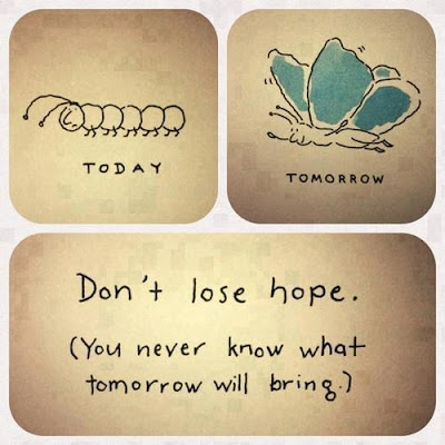 Today, a caterpillar, tomorrow a butterfly. So never lose hope!