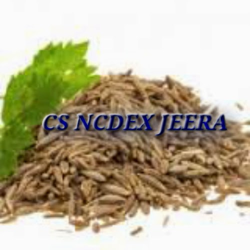 ncdex jeera, Agri Commodity Tips, free agri calls, Free Agri Tips, Future Trading Tips