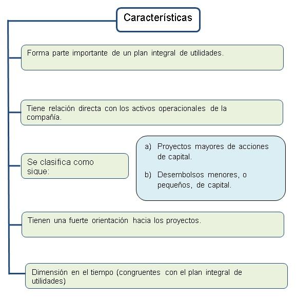 CARACTERÍSTICAS DE UN PRESUPUESTO DE DESEMBOLSO DE CAPITAL
