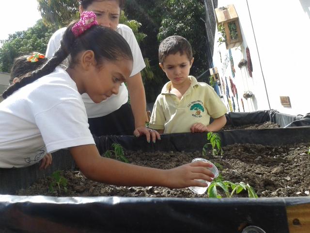Prensa mat ni os de preescolar del minppat crearon patio for Alimento para cachamas