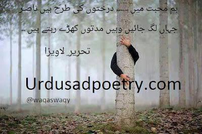 Hum Muhabbat Me