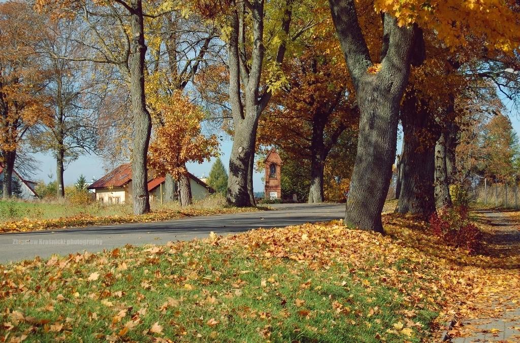 Tej jesieni w Sząbruku