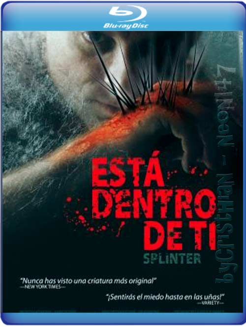 Está Dentro De Ti (Español Latino) (BRrip) (Audio AC3) (2011)