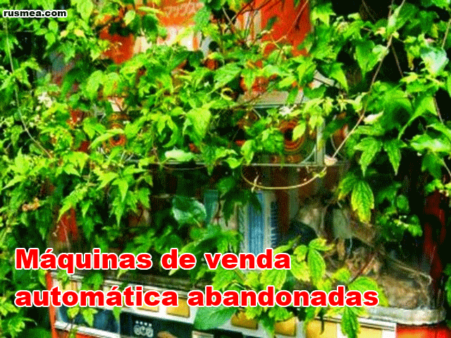 http://www.rusmea.com/2013/09/maquinas-de-venda-automatica-abandonadas.html
