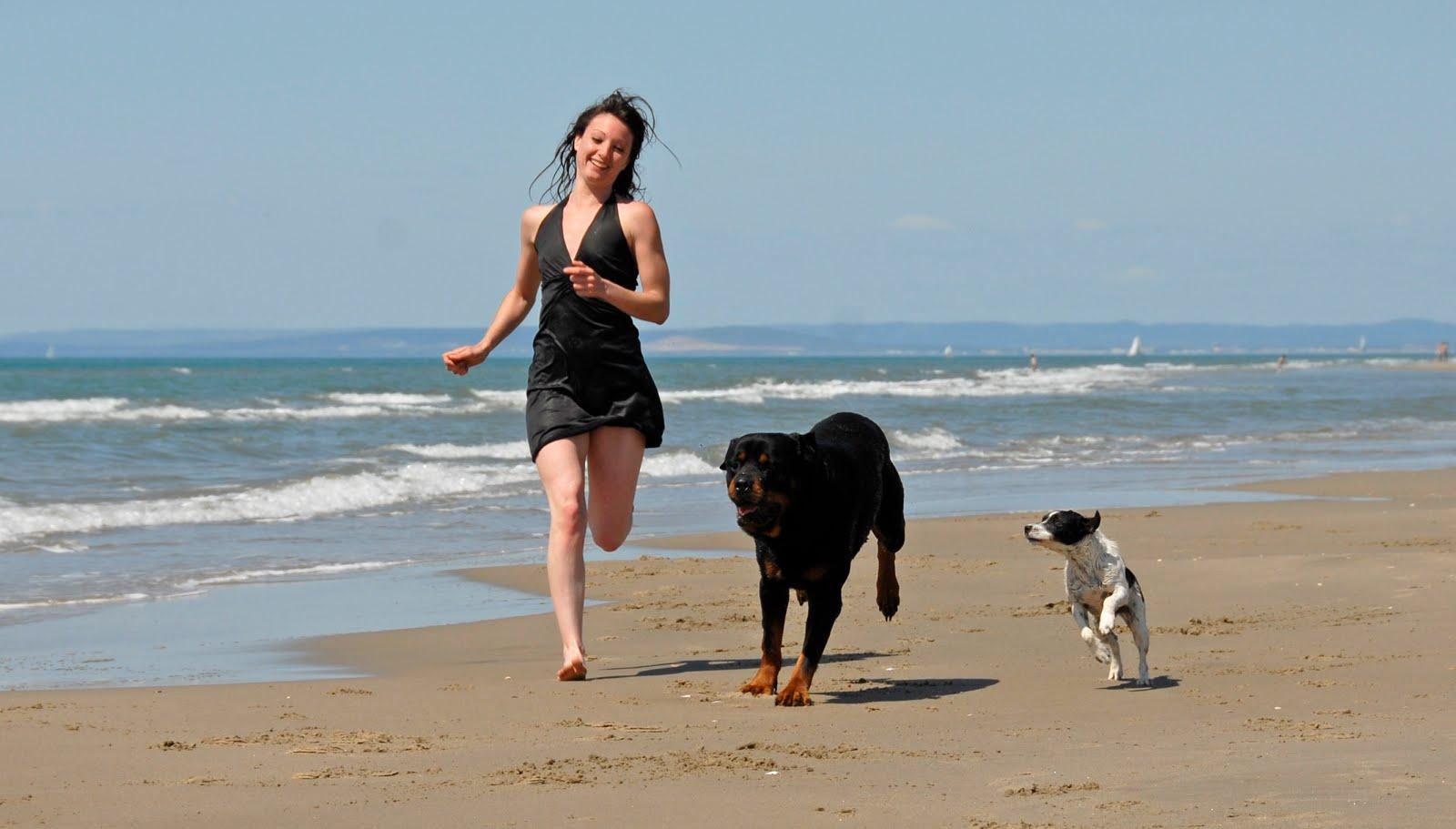El amor de un animal mejora tu salud