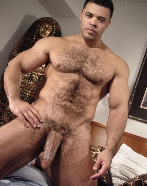 Frot bisex orgy