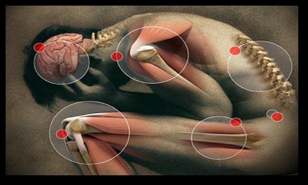 Bolile reumatologice frecvente: guta, artroza