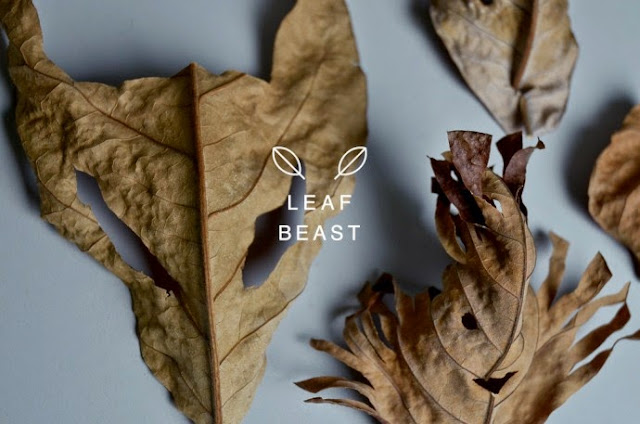 projet Leaf Beast de l'artiste japonais Baku Maera , sculpture en feuilles mortes de magnolia représentation d'animaux dans l'art moderne et contemporain. Exposition d'art moderne. blog d'art contemporain Vanessa Lekpa