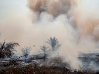 Bencana Kabut Asap sengaja dibiarkan sebagai Pengalihan Isu Ekonomi