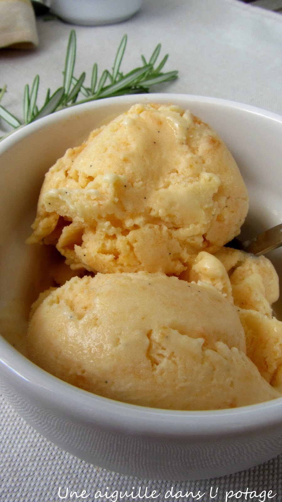 glace aux abricots romarin mascarpone