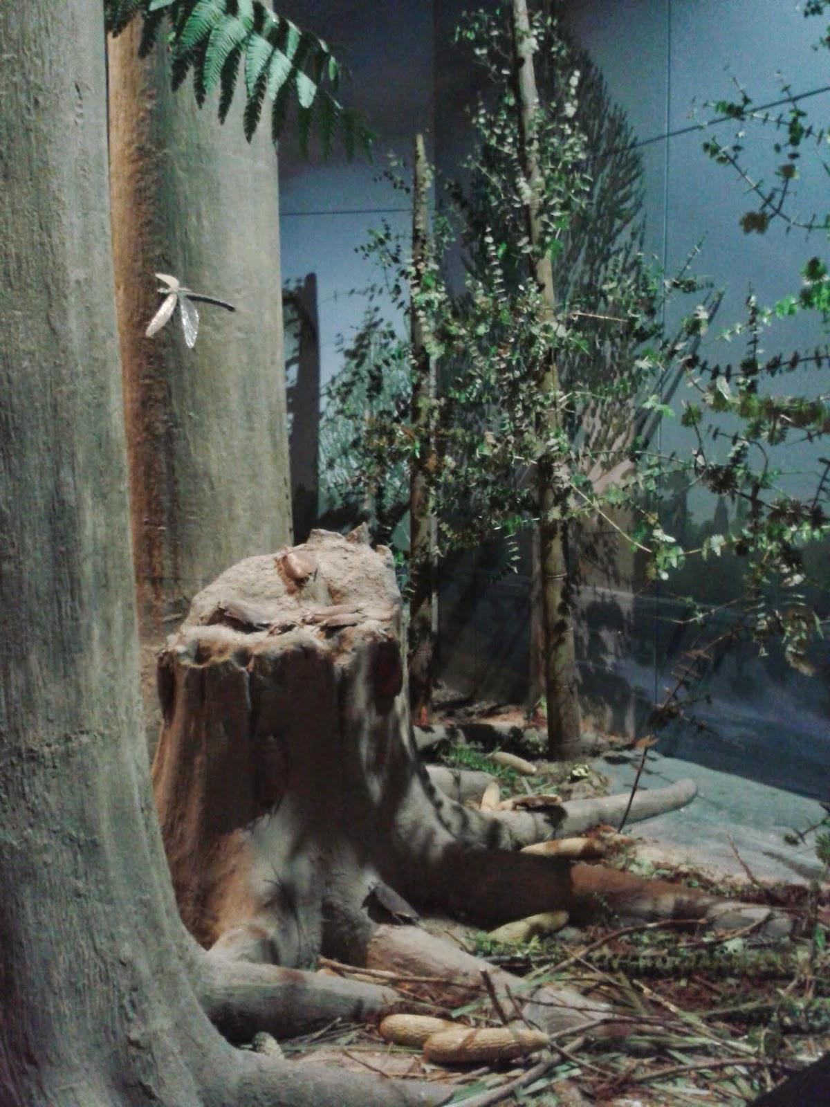 A prehistoric scene