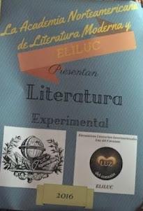 "PROYECTOS: ""LITERATURA EXPERIMENTAL"""