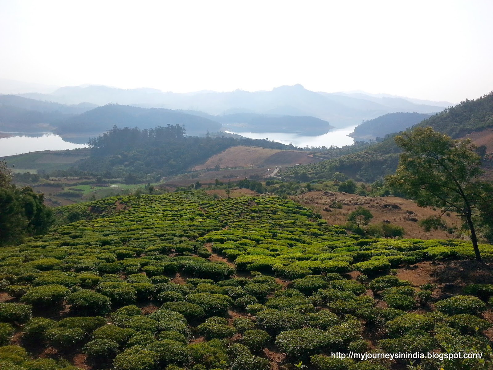 Redhills Ooty