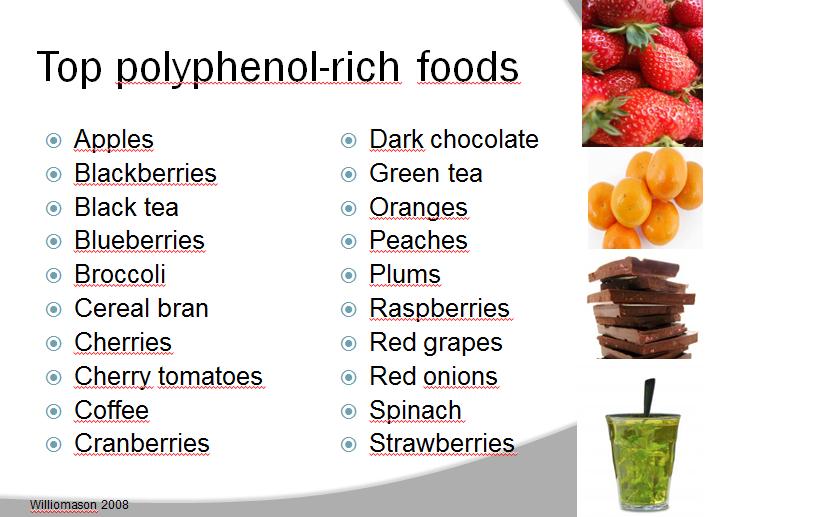 Food List High In Polyphenol
