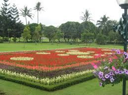 FLOWER GARDEN PLOT of Indonesian Wallpapers